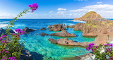 Madeira, rocks, ocean, natural pool, flowers, colorful, seascape