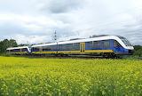 Streikpuzzle - Niers-Express