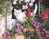 Cat in the Window Box