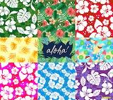 Collage 001 Hawaiian