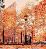Flatiron Building Madison Square Park Autumn Leaves
