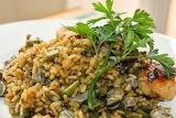 Arròs - Rice