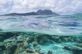 Hidden Beneath the Tropical Sea and Sky