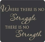 Where there is no struggle, there is no strength