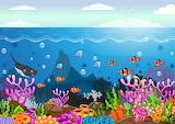 La bellezza della vita sottomarina