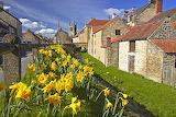 houses, England