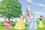 Disney-princess-lovely-castle