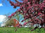 Spring Providence Rhode Island
