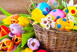 Holidays Easter Tulips Daffodils Eggs Wicker 519780 1280x853