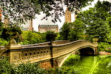 Bridge, forest, design, greens, trees, river, architecture, fore