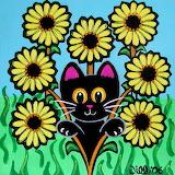 SunflowerField_JillWest