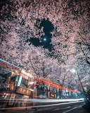 Art tumblr archatlas Japan RK 3