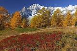 Automne au mont blanc