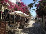 Island Spring-Greece