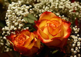 ^ Beautiful red yellow rose bouquet