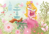 Princess Aurora the Dream Princess