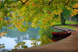 Peaceful Lake Scenery