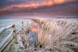 Winter-frost-stream-dry grass-fence-nature-landscape