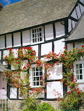 Cabins - Rose-clad timber cottage, Herefordshire
