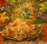 Queen Of Fall
