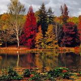 Ataturk-arboretumu-İSTANBUL