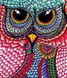 P&P - Colourful Owl Mandala