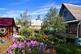 Garden and Houses Arkhangelsk Russia