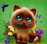 ☺♥ Kitty...