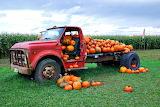 Chevy C50 Pumpkin Truck