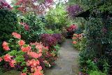 England Gardens Rhododendron Walsall Garden Shrubs 518506 1280x8