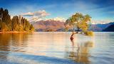 New-Zealand-Lake-Wanaka