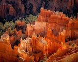 USA, Utah, national Park, Bryce Canyon