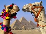 POTW Ancient Egypt Uber Service