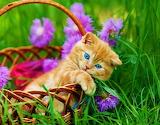 ☺♥ Cute...