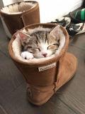 Snug and warm