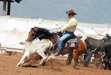 Rodeo-