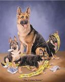 Greman Shephard family