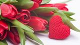 Tulips - heart - valentine