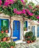 ^ Bougainvillea Blue Door Greece