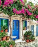 ^ Bougainvillea Blue Door Greece