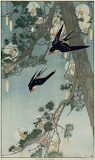 """Fairy Tales"" tumblr dogstardreams ""Bertha Lum"" Birds"