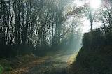 Paysage brumeux / Misty Landscape 06