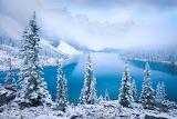 Canada. Winter landscape