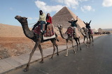 Tourists Buses in Egypt ...