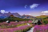 Hala Gąsienicowa cabins, Tatras, Poland