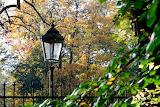 Jesień-foto-K.S.-Altro