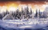 #Winter Sunrise