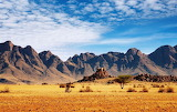 Desierto- La Danza Vital