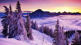 Winter Landscape I