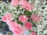 ^ Pink Carnations and Baby's Breath